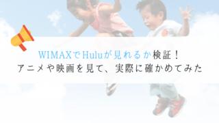 WIMAX Hulu